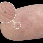 Implant cochléaire découpé par électro-érosion à fil réalisé la société VUICHARD SAS.